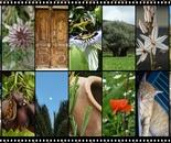 my photographic link