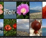 images of cyprus