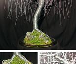 Gentle Willow  - Wire Tree Sculpture