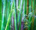bamboos trio