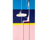 DONNA ALLO SPECCHIO -50X150 ACRYLIC -2011