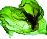Plastic Currents, (Green)
