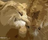 coccole tra leoni