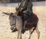 Cairo Donkey Rider