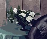 vaso di fiori_omaggio a Annie Leibovitz