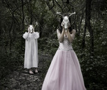 Untitled (with Deer Skulls)