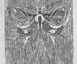 Mutant Butterfly
