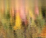 B-Reflections 04