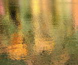 B-Reflections 05