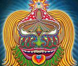 Moksha Master