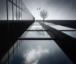 The Ethereal Flying Garden