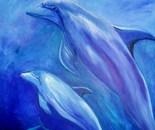 dolfijnen acryl 80 x 100 cm