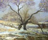 Tree at a dam