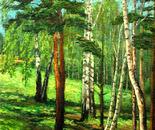 Bryansk woods - the BIRCH-glade