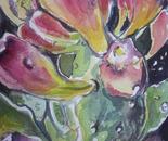 Spring  Cactus Buds I