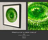 Profile of a crop circle