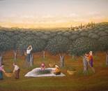 50x70 cm Olive collectors