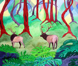 Wild Woods with Elk