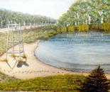 Meatbird Lake