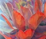 Grand Succulent