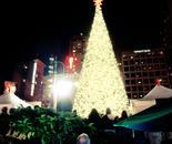 Macy's Tree 2011