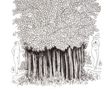 Invitation to the forest - Ink on Paper 7x11 (18x28cm)