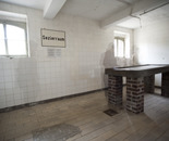 THE SOULS OF MAUTHAUSEN 2012 - 5