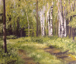 Path to the birch trees.