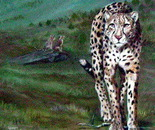 Cheeta and Family