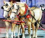 Savannah Buggy Horses