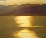 'Evening Light Dunedin Harbour'