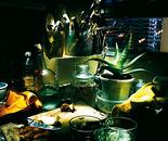 Cocina con aloe. 2007