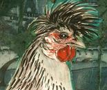 Hen in Venice