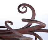 octopoda detail