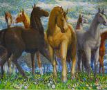 Herd in Springtime