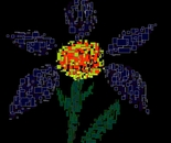 A Rectangular Flower