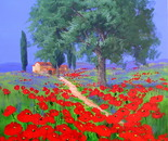 Tuscany and Poppies