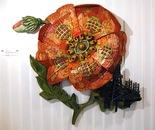Afghan Poppy