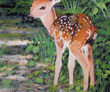 First Steps Of The Fawn
