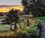 Daybreak, Southwest Corner Fence Line