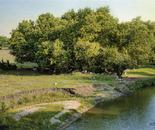 Barry Creek Cache