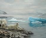 Polar Summer