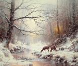 A Warm Glow of Winter