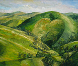 Heart Hill at Pollok, NZ