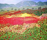 Grany Mary's Poppies