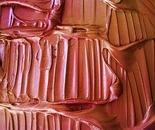 Copper Interlude ~ Copyright 2012