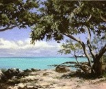 Grand Bay Mauritius