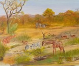 Waterhole in the Kruger National Park