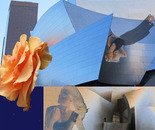 ROSE FOR GEHRY