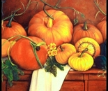 Pumpkins in Harvest